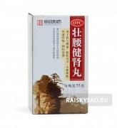 """Пилюли для укрепления почек и суставов """"Чжуаняо Цзяншэн""""(Zhuangyao Jiansheng Wan)"""